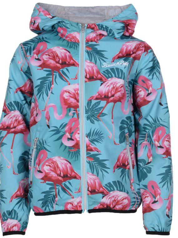 Flamingo Wind Jacket Jr, Turquoise, 160, Jackor