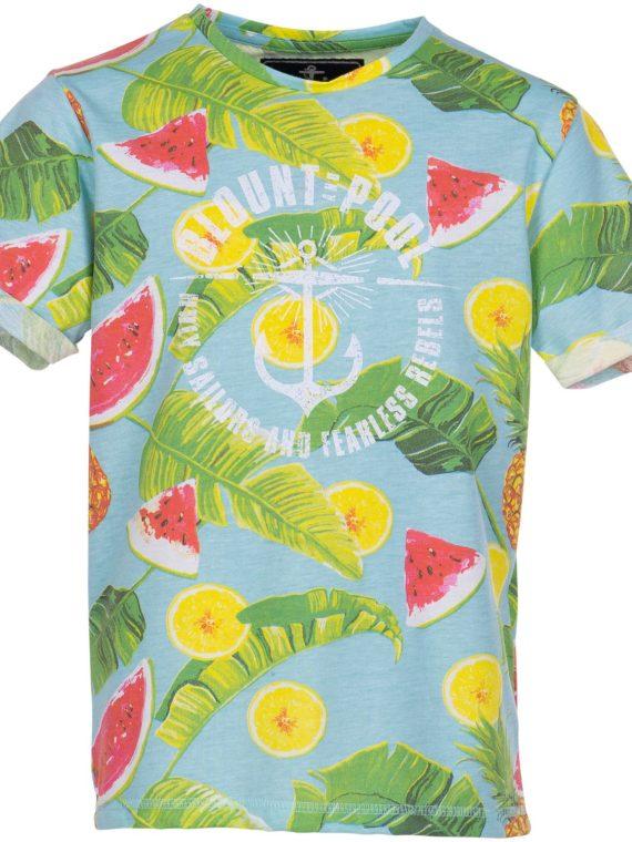 Melon Pineapple Tee Jr, Blue, 140, Blount And Pool